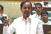 KCR Issues a Clarification About Uranium Mining in Nallamala Forest