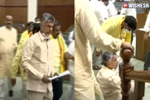 Ruckus in AP Assembly: TDP Walks Out