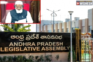AP Legislative Council Votes Against Three Capitals