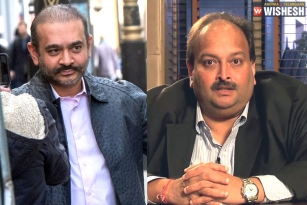 ED Seizes Rs 1350 Cr Worth Diamonds Owned By Nirav Modi And Family