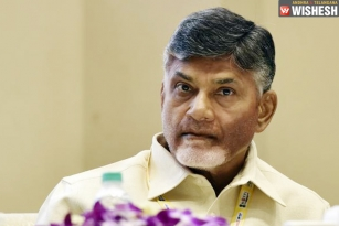 New Schemes In AP Named After Chandra Babu