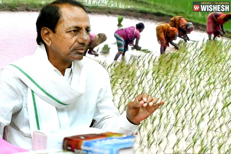 Telangana Government to Launch a Digital Survey on Farm Lands